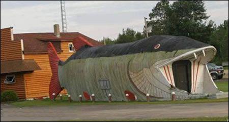 世界上最奇怪的房子